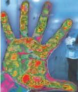 hand bacteria