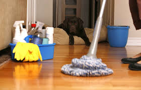Cleaning_Supplies_Ankota