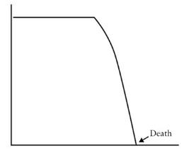 Being Mortal Rapid Decline