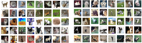 Deep Learning Cats and Dogs